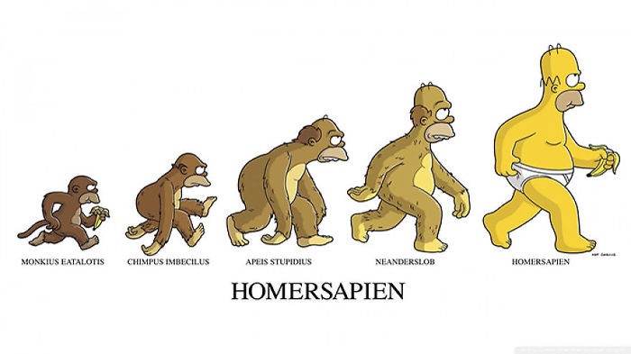 funny-human-evolution-illustration-cartoons-comic (10)