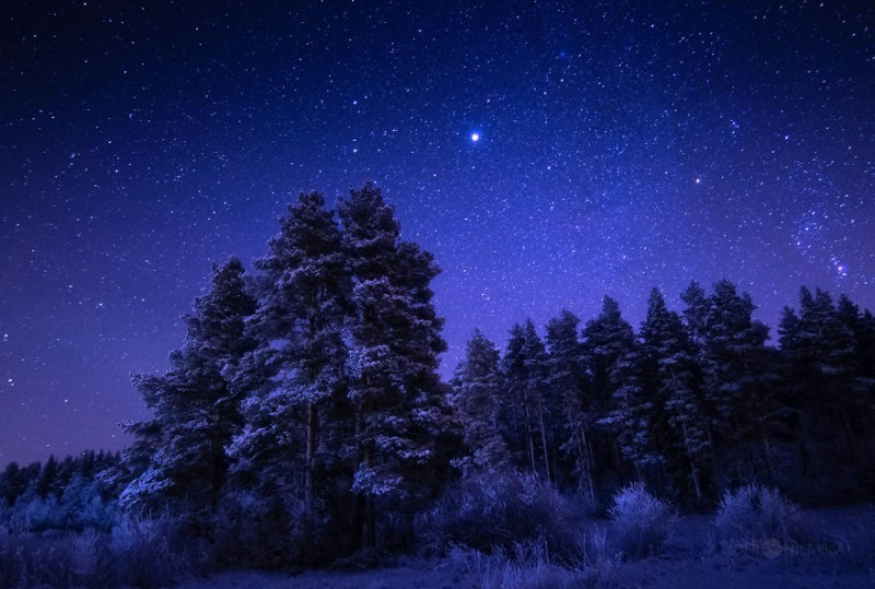 wonderful-clear-starry-night-sky-finland-photos (12)