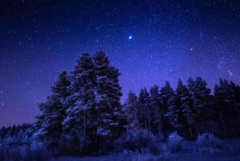 wonderful-clear-starry-night-sky-finland-photos (12)