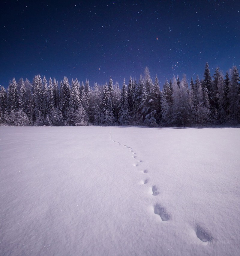 wonderful-clear-starry-night-sky-finland-photos (9)