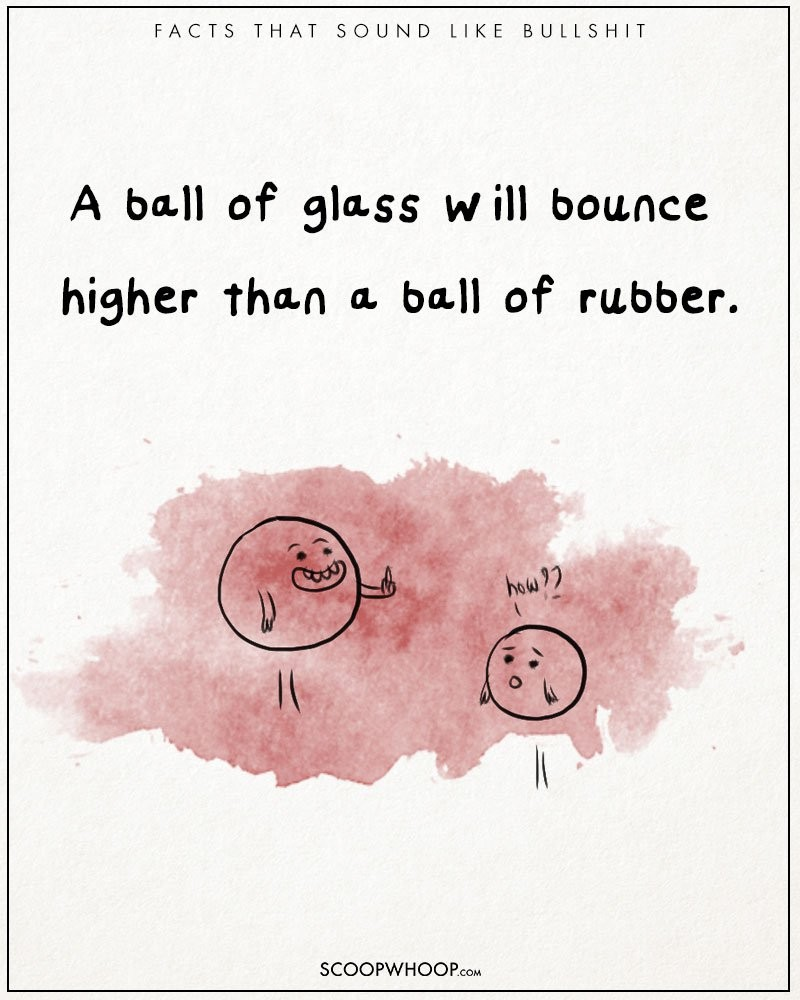 Absurd-true-bullshit-facts-funny-illustrations-comics (14)