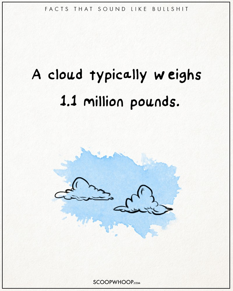 Absurd-true-bullshit-facts-funny-illustrations-comics (16)