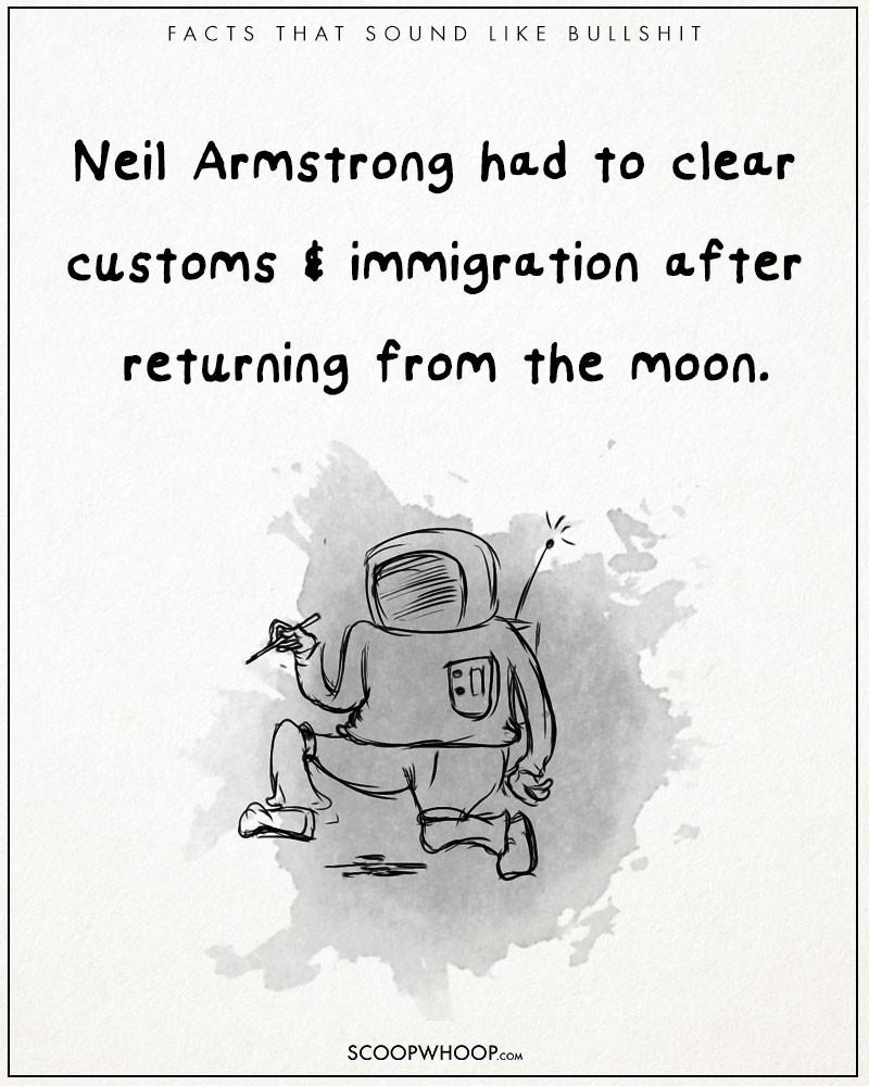 Absurd-true-bullshit-facts-funny-illustrations-comics (24)