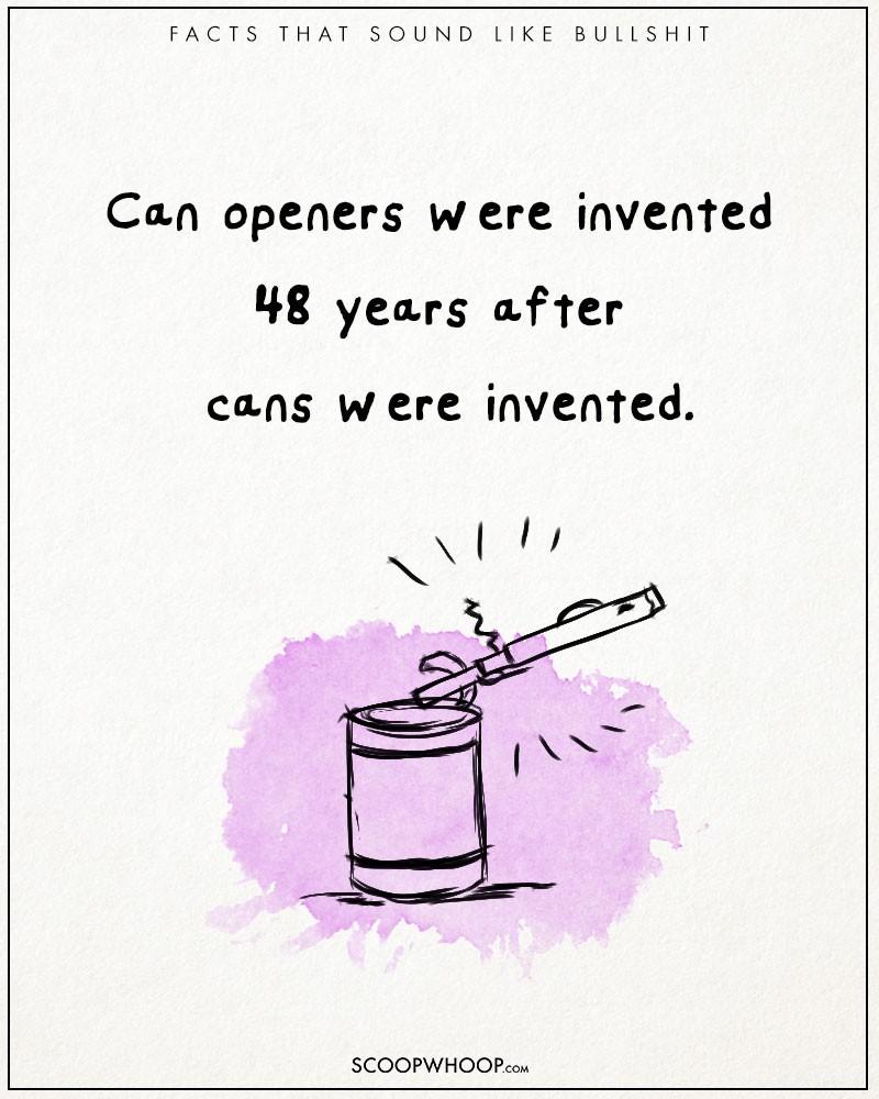 Absurd-true-bullshit-facts-funny-illustrations-comics (4)