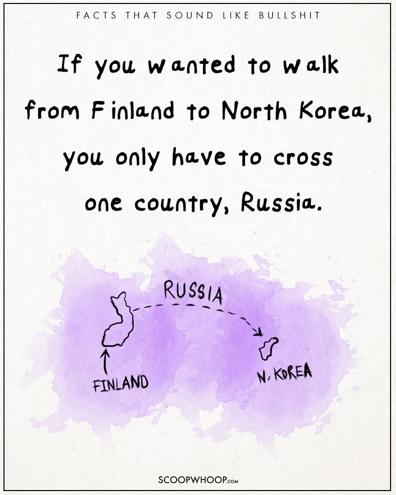 Absurd-true-bullshit-facts-funny-illustrations-comics (7)