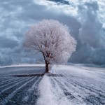 The IR world by photographer in Poland – Amazing beauty of landscape in infrared photography