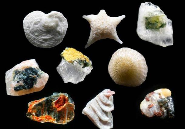 beautiful-microscope-sand-macro-photograph (5)
