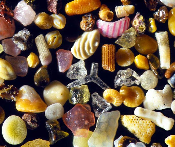 beautiful-microscope-sand-macro-photograph (6)
