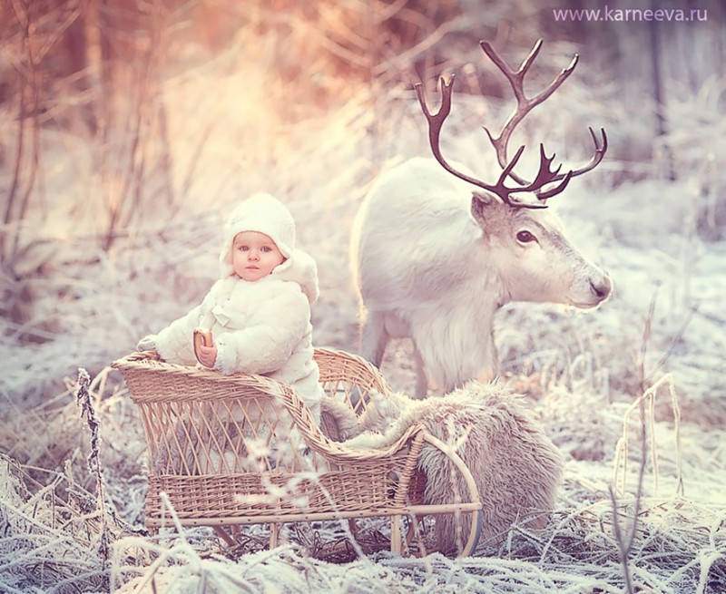beautiful-winter-field-children-animal-playing-photographs (3)