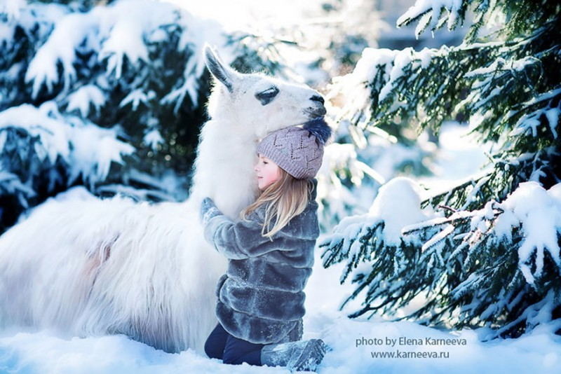 beautiful-winter-field-children-animal-playing-photographs (9)