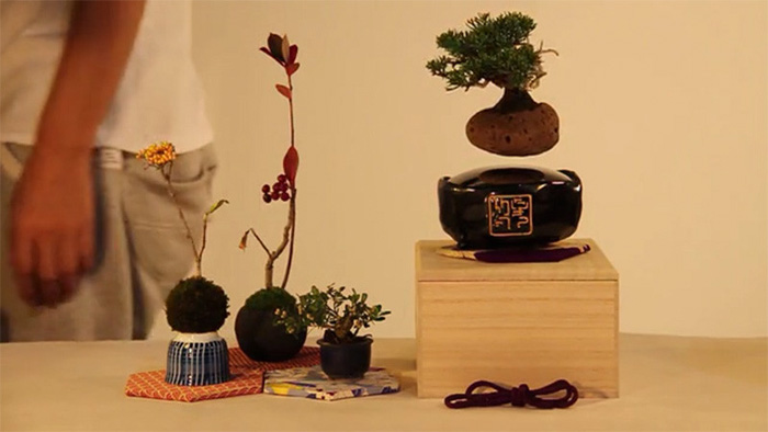 cool-design-floating-bonsai-trees-in-air (3)