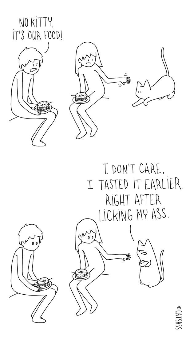 funny-comics-drawings-Catsass-cat-human-relationship-thinks (12)