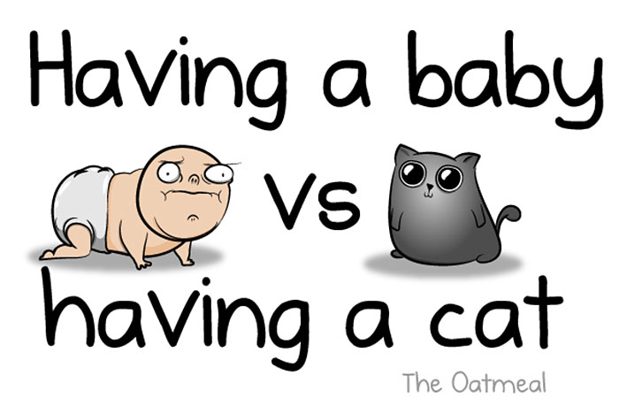 funny-illustrations-baby-vs-cat-hilarious-comics (1)