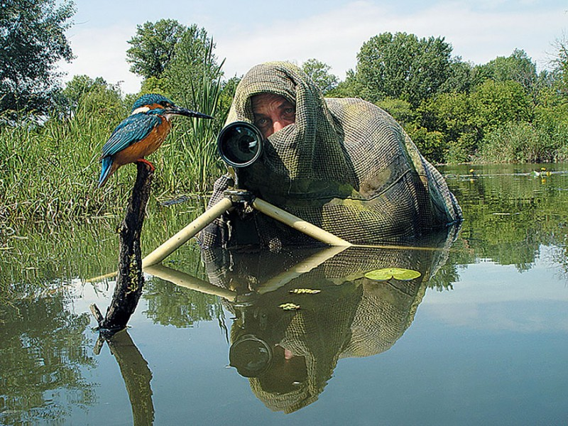 funny-pictures-nature-and-wildlife-photography-behind-lens (10)