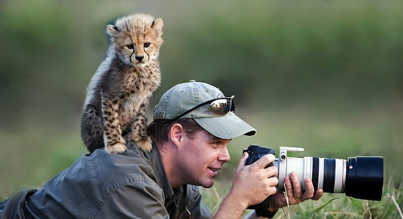 funny-pictures-nature-and-wildlife-photography-behind-lens (16)