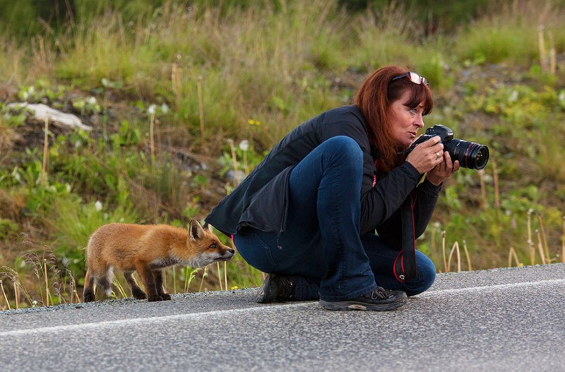 funny-pictures-nature-and-wildlife-photography-behind-lens (19)