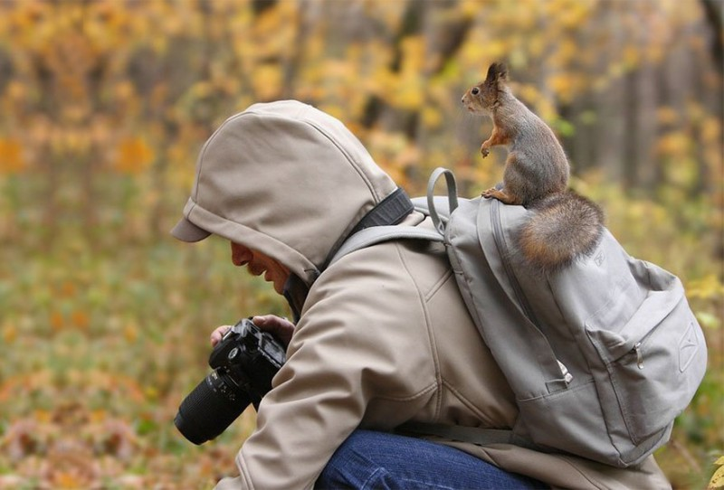 funny-pictures-nature-and-wildlife-photography-behind-lens (2)