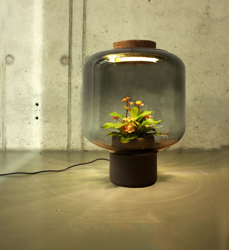 innovative-design-lamps-plants-grow-windowless-spaces (3)