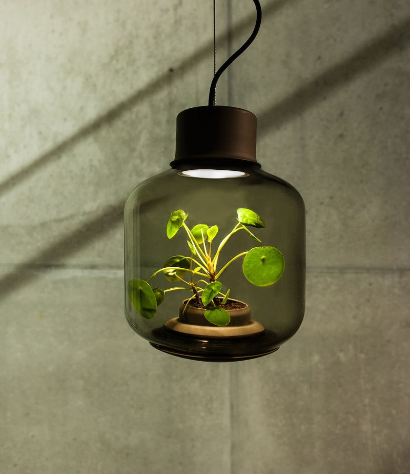 innovative-design-lamps-plants-grow-windowless-spaces (5)