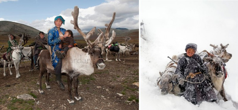 mongolia-reindeer-tribe-Dukha-people-photographs (5)