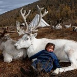 Photographer also a scholar captures the life of reindeer people in Mongolia