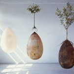 Organic burial pods will turn cemeteries into memorial parks full of trees instead of tombstones and crosses