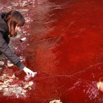 Shocking photos representing serious pollution problems in China