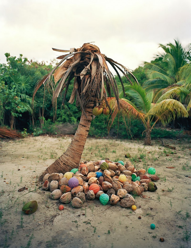 sea-pollution-washed-up-trash-art-installations (5)