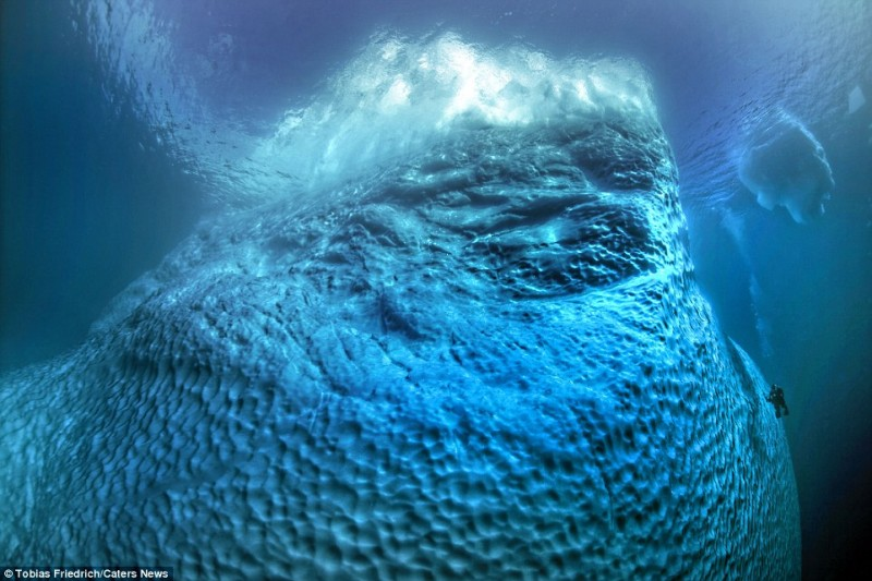 amazing-pictures-of-spectacular-underwater-icebergs (12)
