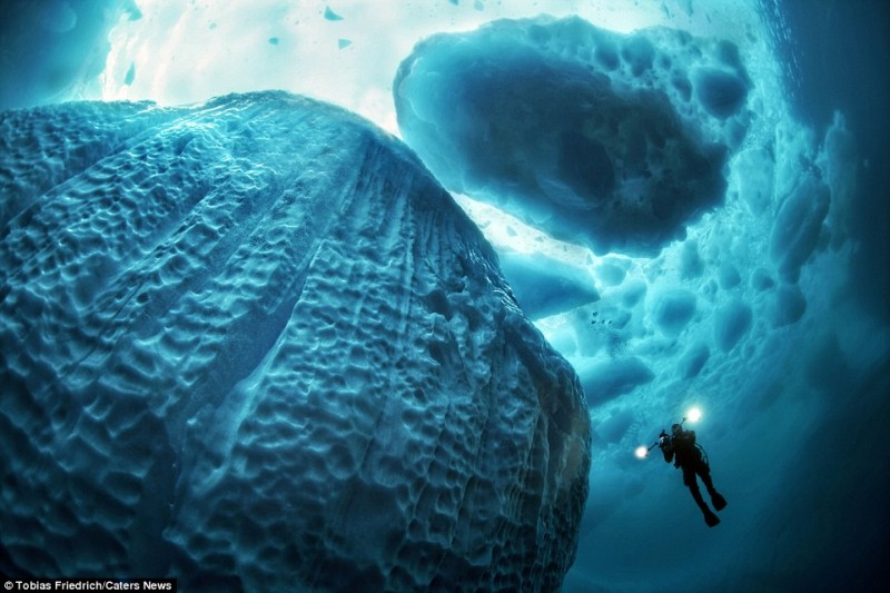 amazing-pictures-of-spectacular-underwater-icebergs (9)