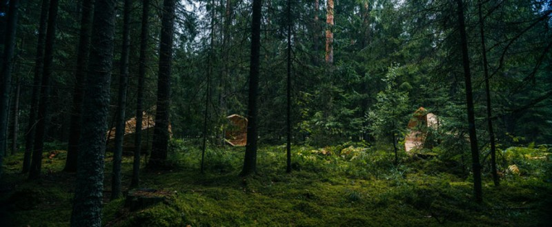 art-installation-nature-forest-sounds-giant-megaphone (6)