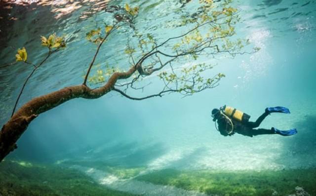 beautiful-spectacular-underwater-park-Austria-photos (1)