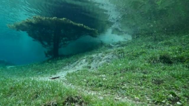 beautiful-spectacular-underwater-park-Austria-photos (7)