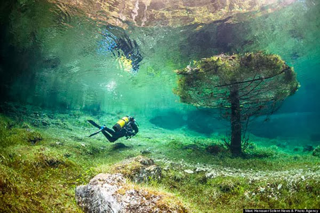 beautiful-spectacular-underwater-park-Austria-photos (8)