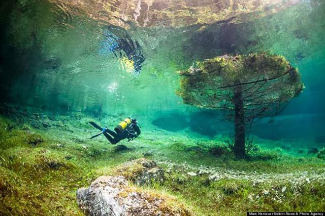 beautiful-spectacular-underwater-park-Austria-photos (8)