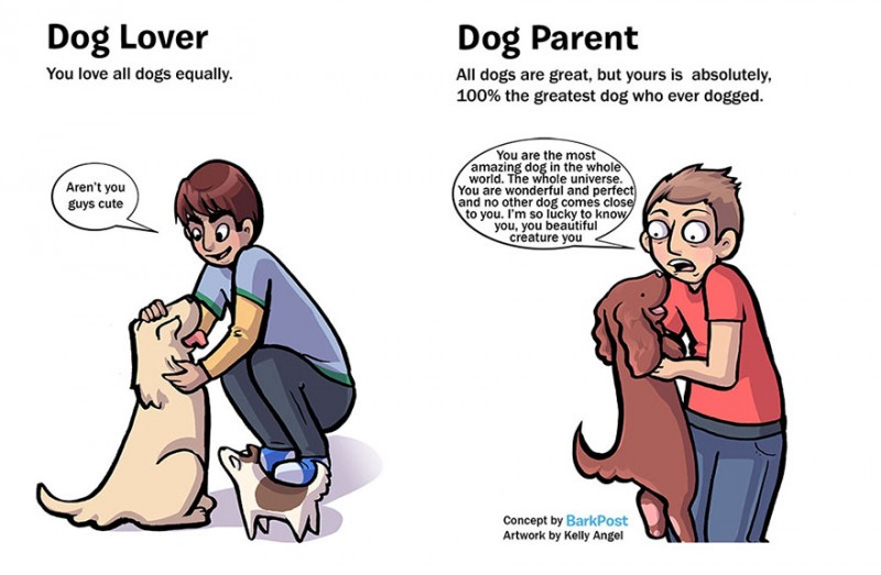 interesting-comics-dog-lover-vs-parent-illustration (2)