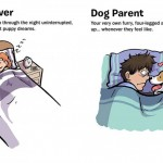 Dog lover vs. dog parent – Funny illustrations representing 7 differences between loving and having dogs