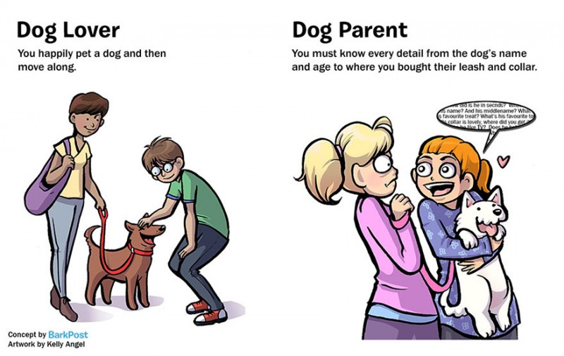 interesting-comics-dog-lover-vs-parent-illustration (5)