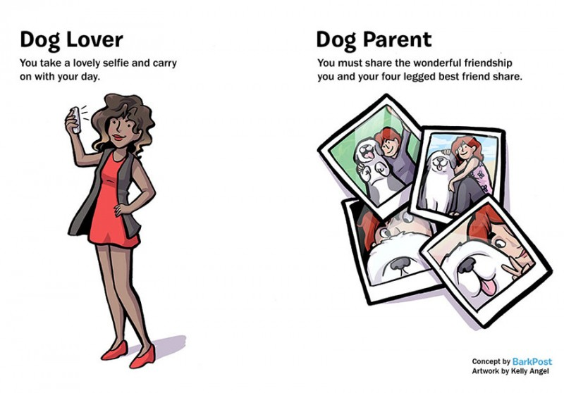 interesting-comics-dog-lover-vs-parent-illustration (6)
