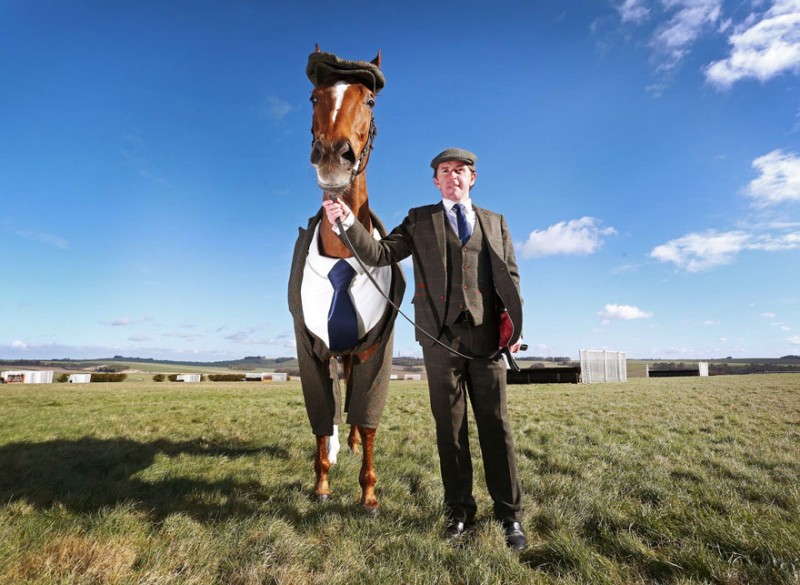 race-veteran-Morestead-horse-clothing-design-suit (3)