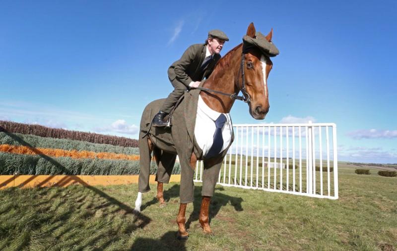 race-veteran-Morestead-horse-clothing-design-suit (4)