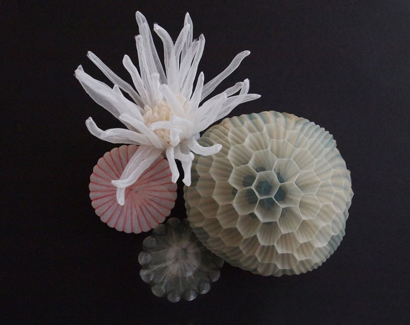 beautiful-jewerly-translucent-fabric-inspired-sea-creatures (12)