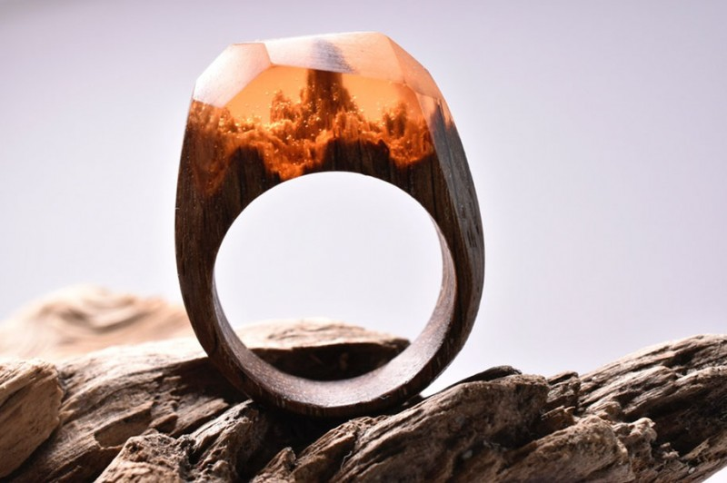 beautiful-miniature-worlds-wooden-rings-design (10)