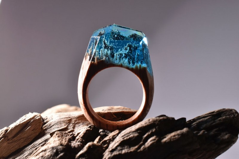 beautiful-miniature-worlds-wooden-rings-design (12)