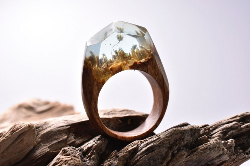 beautiful-miniature-worlds-wooden-rings-design (13)