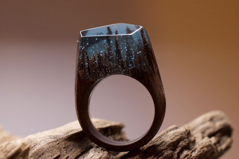 beautiful-miniature-worlds-wooden-rings-design (3)