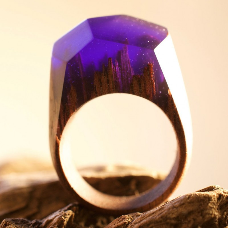 beautiful-miniature-worlds-wooden-rings-design (4)