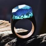 Wooden rings containing miniature hidden worlds by Secret Wood