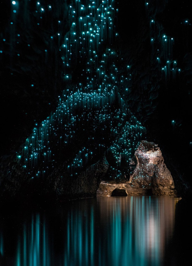 beautiful-pictures-glow-worms-limestone-caves-new-zealand (8)