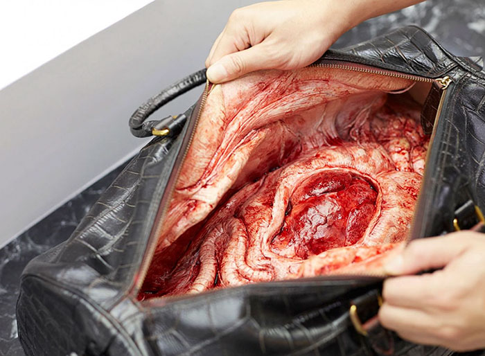 behind-leather-accessories-anti-animal-cruelty-campaign (1)